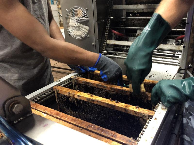 Hand Scraping | Gentle Breeze Honey